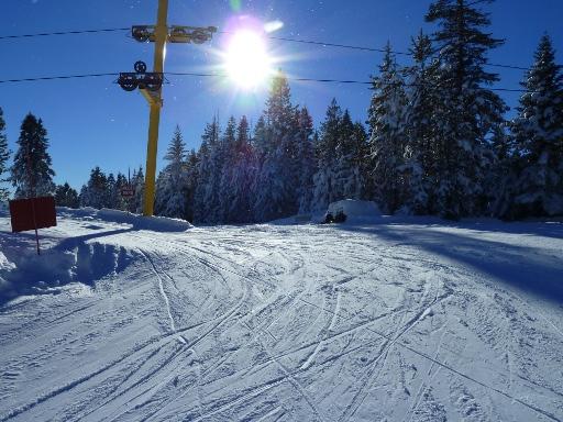 Snowhaven!